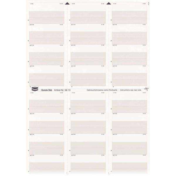 581020 Quick-Tabs grauviolett