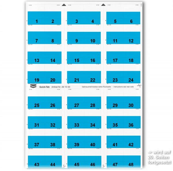 291003N Daten-Tabs mit Nr.-Druck 1-999/Serie=21Bla